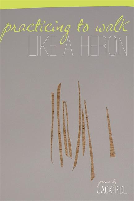 practicing_heron_ridl
